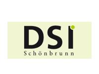 DSI - Eigenfuhrpark